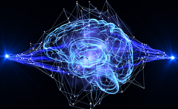 retain your brain